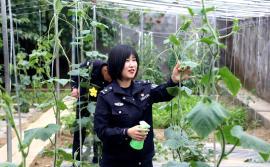 西藏戍边女民警李冬雪:有爱就没有远方
