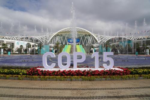 联合国秘书长:全球生态系统崩溃将重创发展中国家