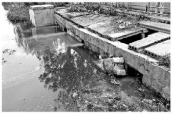 中央生态环保督察揭露两市水体返黑返臭背后原因